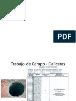 Trabajo de Campo y Estructuracion