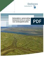 Buitendelta's samenvatting bestaande kennis en opties voor pilots