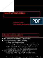 Proteins Purification