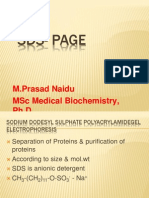 SDS-PAGE
