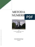 Metoda Numerik by Djoko Luknanto