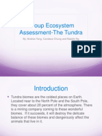 group ecosystem assessment-the tundra