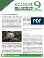 Hoja etnobiologica 9.pdf