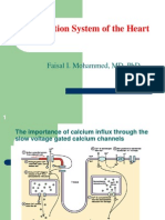 conduction system-students-f
