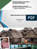 Clase Determinantes de La Salud Lita Ortiz 2014 SINTETIZADA
