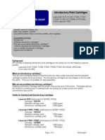 Introductory Cartridges White Paper 2-08.doc