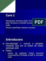 Curs 1.pptDermatologie