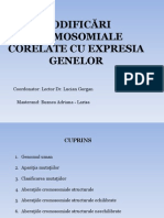 Prezentare Modificări Cromosomiale-Buznea Larisa