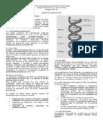 Guía Genética. Acidos