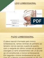 PLEXO LOMBOSSACRAL