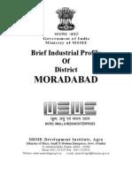 16 DIPS Moradabad1 (4)