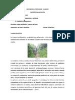 UNIVERSIDAD CENTRAL DEL ECUADOR t2.docx