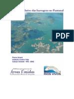 Efeito Cumulativo Das Barragens No Pantanal