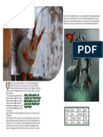 Assignment2 Magazine Layout Part I