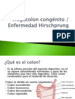 megacoloncongnito-120520141842-phpapp02