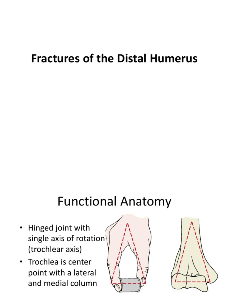 Fr Distal Humerus | Elbow | Anatomical Terms Of Motion