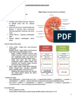pbl urin 1