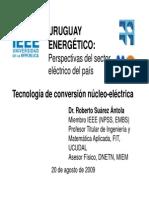 Nucleo Electrica Presentacion IEEE