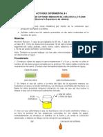 ACTIVIDAD EXPERIMENTAL 3 Identificacion de Cationes