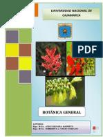 Separata de Botanica Blgo,m.cs.Jose Guevarra Barreto