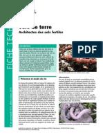 1619-vers-de-terre.pdf