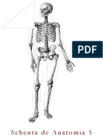 Sebenta de Anatomia 5_2014