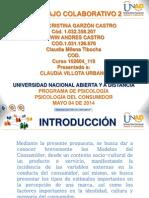 Trabajo Colaborativo 2 Grupo 102604 119