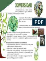 Lamina Biodiversidad1.