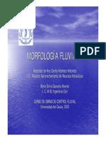 p Morfologia