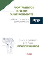 COMPORTAMENTOS REFLEXOS
