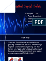 Ventrikel Septal Defek
