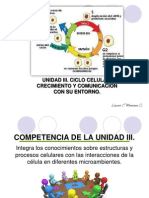 1 Ciclo Celular 2 Mitosis