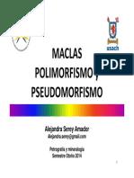 7 Maclas Polimorfismos y Pseudomorfismo