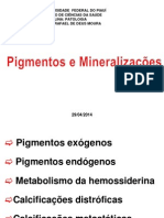 Pigmentos e Mineralizacoes Prof Rafael