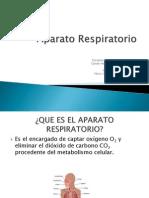 Aparato Respiratorio 4ºSem(2)