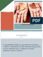viasascendentesdefinitivooctubre09-091106060149-phpapp01.pdf