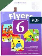 flyers 6