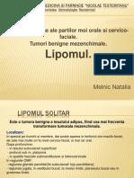 OMF Lipom