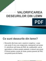Valorificarea Deseurilor Din Lemn.