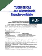 Studiu de Caz - Sisteme Informatinal - Contabile