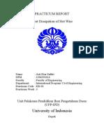 PDF W2004 RLAB Heat Dissipation of Hot Wire