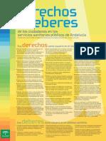 Carta derechos y deberes castellano.pdf