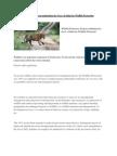 Wildlife Protection