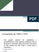 O Novo Lugar Da Amazônia No Séc.xxi