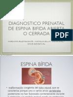 Presentacion Espina Bifida