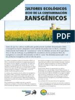 Los Agricultores Ecológicos Pagan El Precio de La Contaminación por Transgénicos