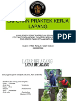 Laporan Praktek Kerja Lapang