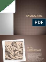 Androginul