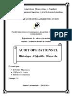 Audit Historique Objectifs Démarche