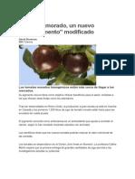 El tomate morado, un nuevo superalimento modificado.pdf